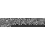 zulfugar-logo